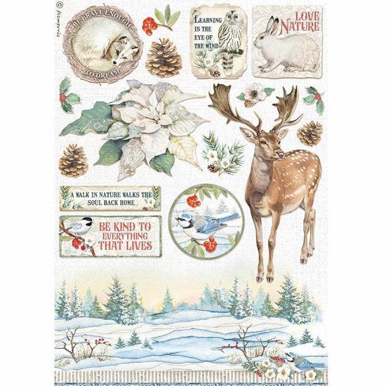 Winter Tales Poinsettia